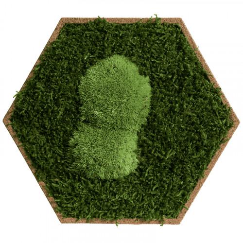 Mosmuur met bolmos en forest mos