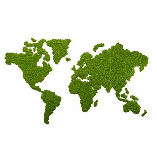 Groene wereldkaart van mos