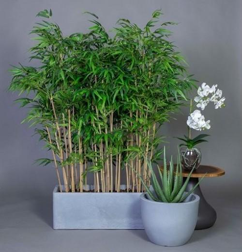Gotessons industriële plantenbakken