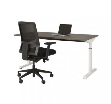 Hoogte instelbaar bureau Easy