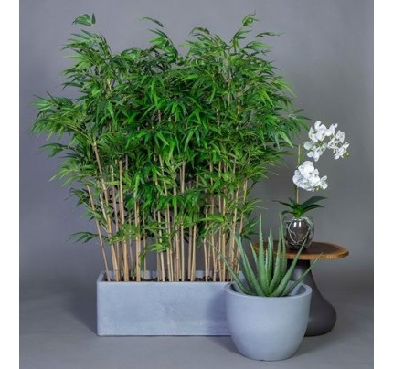 Plantenbak Vierkant en Rond