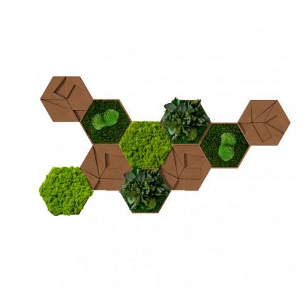 Moswand met hexagon panelen