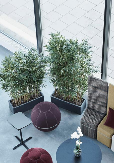Kunstplanten kantoor